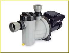 Speck Pumps all plastic, selfpriming'EcoMV'pump