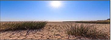 CPSA Alert: Get ready, severe drought on